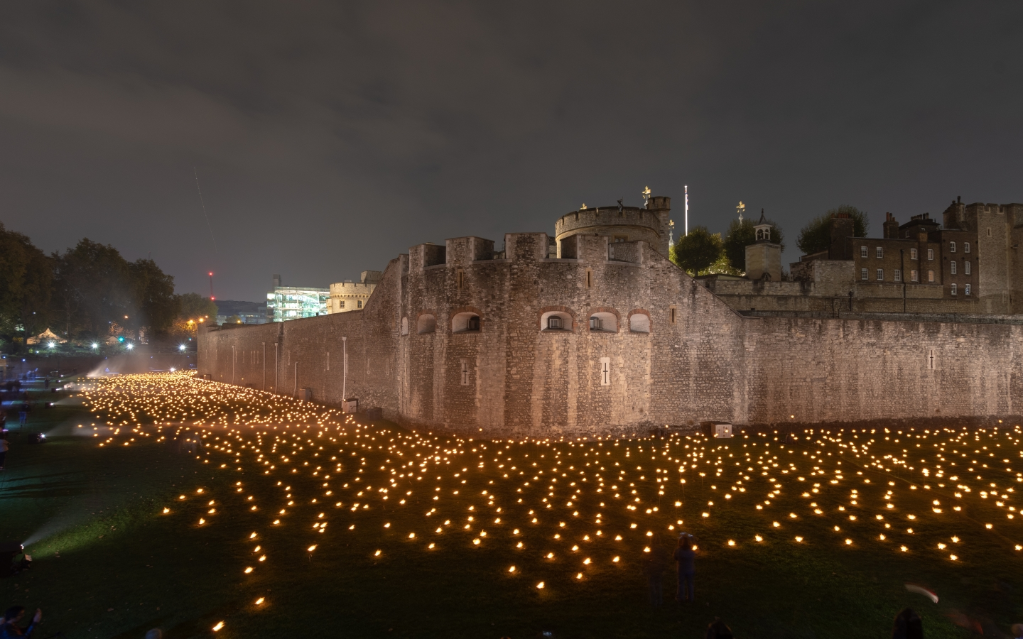 Tower of London for Remembrance Day 2018