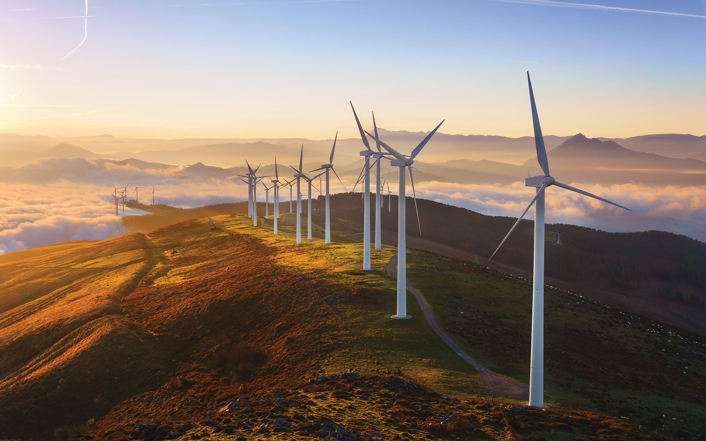 Case Study: Stealth Wind Farm
